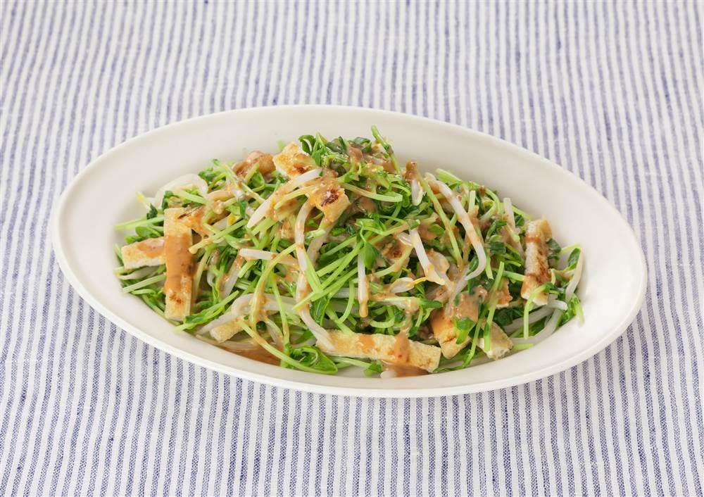 写真:もやしと豆苗のピリ辛サラダ